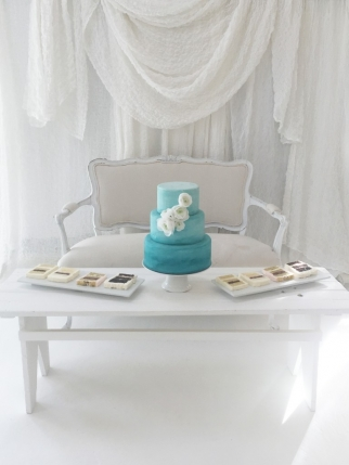 leannes cakes studio